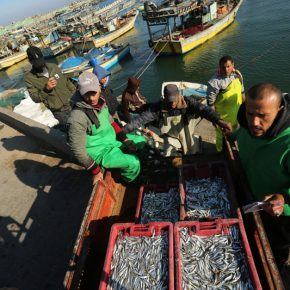 En pleine pandémie, Israël tire 100 fois sur des pêcheurs de Gaza